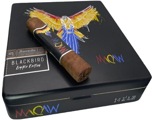 Blackbird Macaw Limited Editon