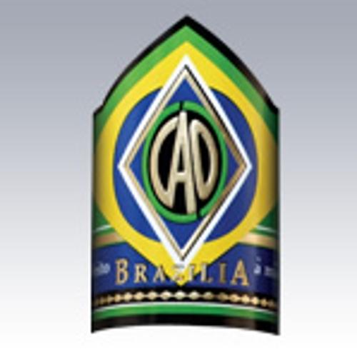 CAO Brazilia Gol (Robusto)